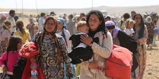 kobani-halk
