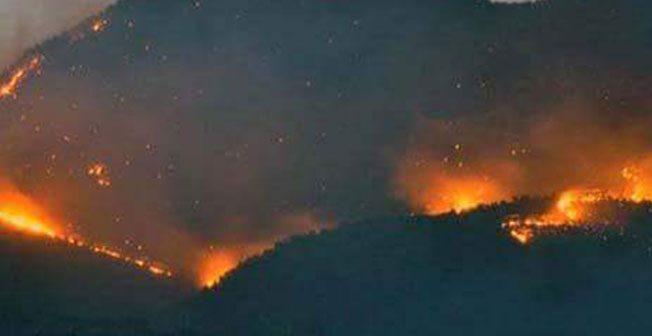 """Dersimliler: """"Askeri operasyonlarla ormanlarımız yakılıyor"""""""