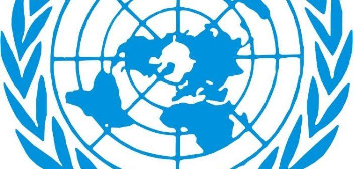 Birleşmiş Milletler Vicdani Ret Kararı (1995)